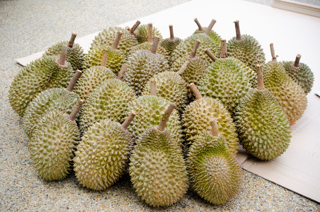 Durian-1